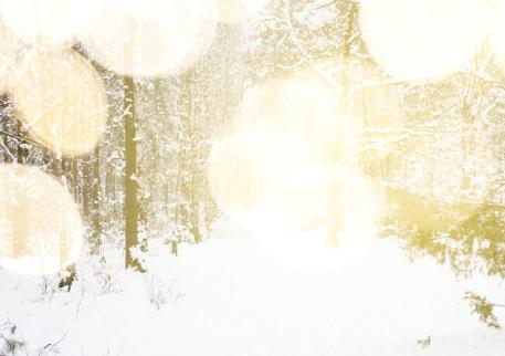 Janice_m_image Winter